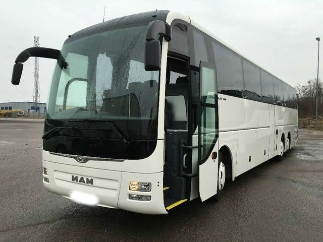 man-lion-coach-01